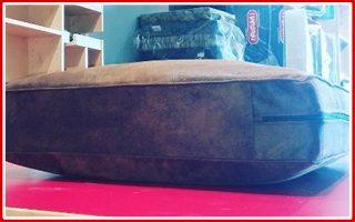 sofa-cushion-newspost